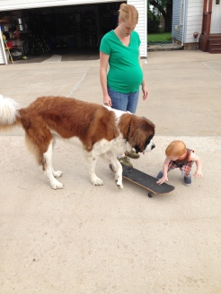 Getting his dog fix at Auntie Nikki and Uncle John's